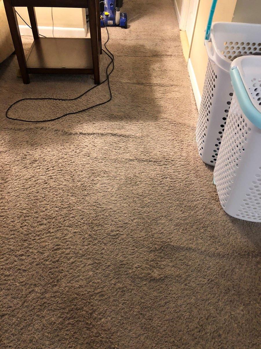 floor-vacuumed-3