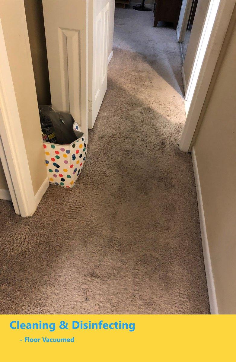 floor-vacuumed-4