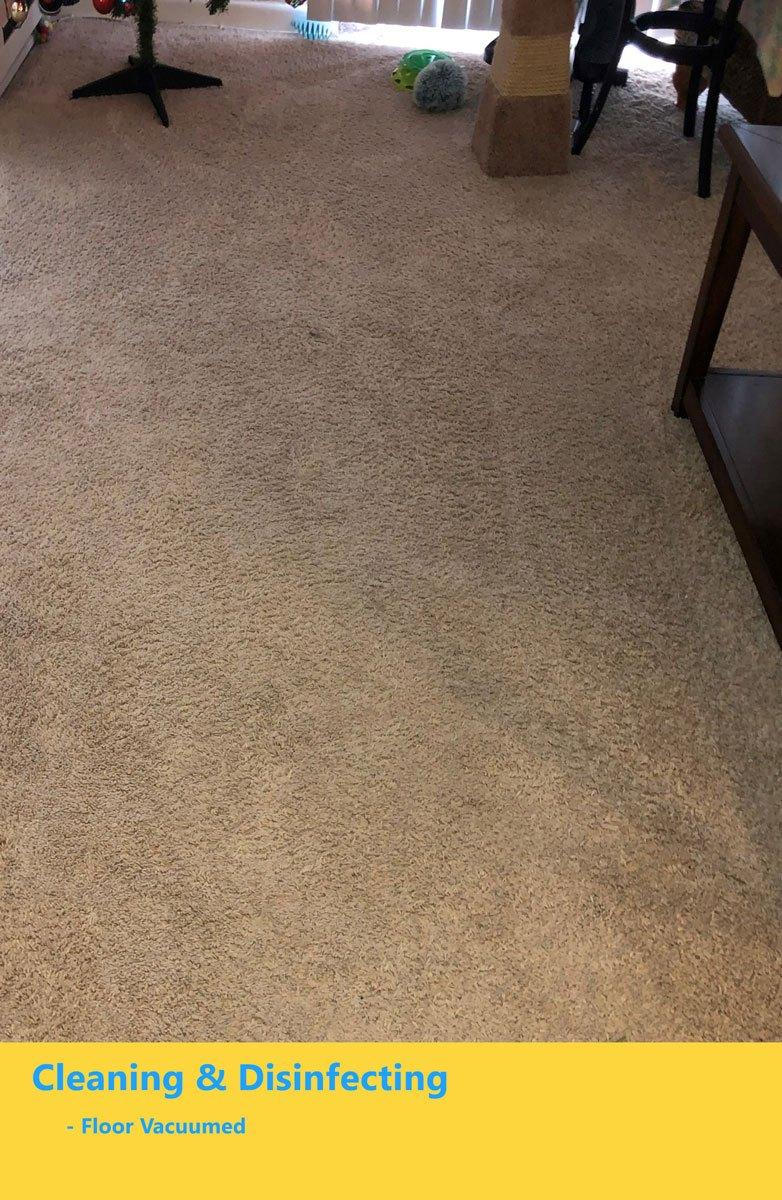 floor-vacuumed